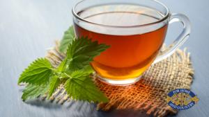 The Origins of Tea | FWIO